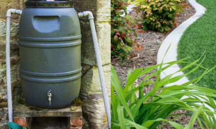 Water Management for the Residential Homeowner