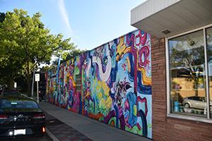 tosa murals